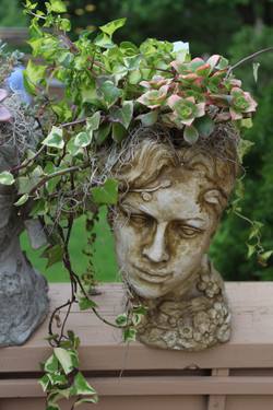 Concrete Head with Succulents