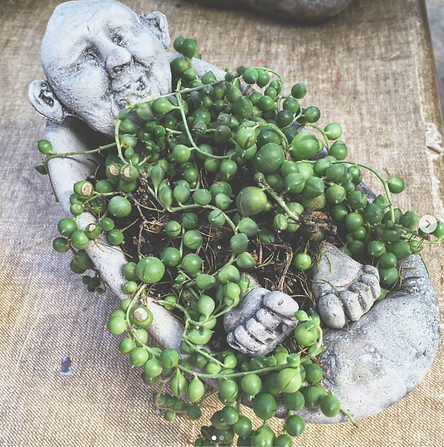 Bathtub Man Planter