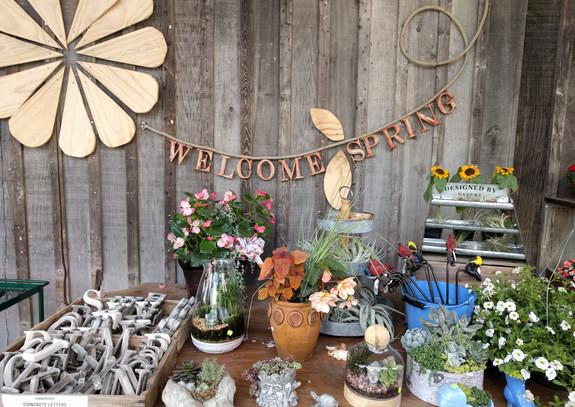 Garden Artistry at Pete's Produce Farm