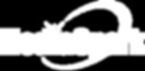 MS Logo White 1000px 300dpi Transparent