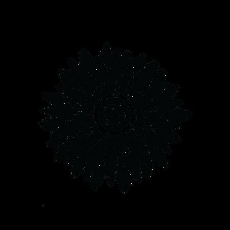 Village Grown Logo_5-7-21.png