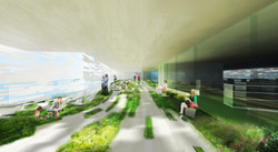 library_green-1