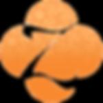 Zaatar-A1-Apricot.png