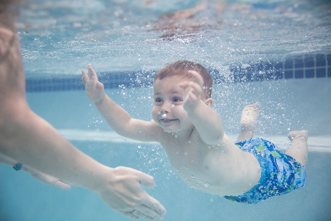 6045_170822_Goldfish_SwimSchool.jpg