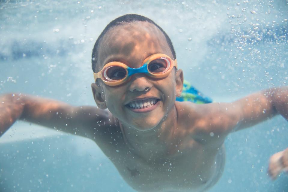 4769_170821_Goldfish_SwimSchool.jpg