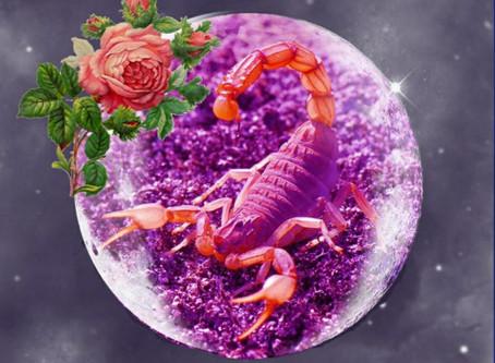 Scorpio Full Moon Energy Reading