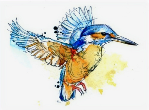 as-kingfishers-catch-fire-lia-melia_edited_edited.png