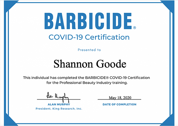 Barbicide Covid-19 Certification for Professional Beauty Industry Training.  Corona Virus sanitation, regulations and procedures for Ohio wedding hair.
