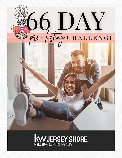 66 Day Seller Challenge (1).png