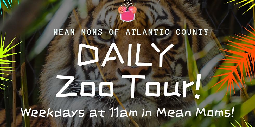Daily Virtual Zoo Tour!