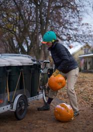 Pumpkin ReHarvest 2018