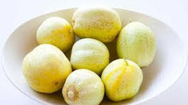 Plant Start Lemon Cucumber