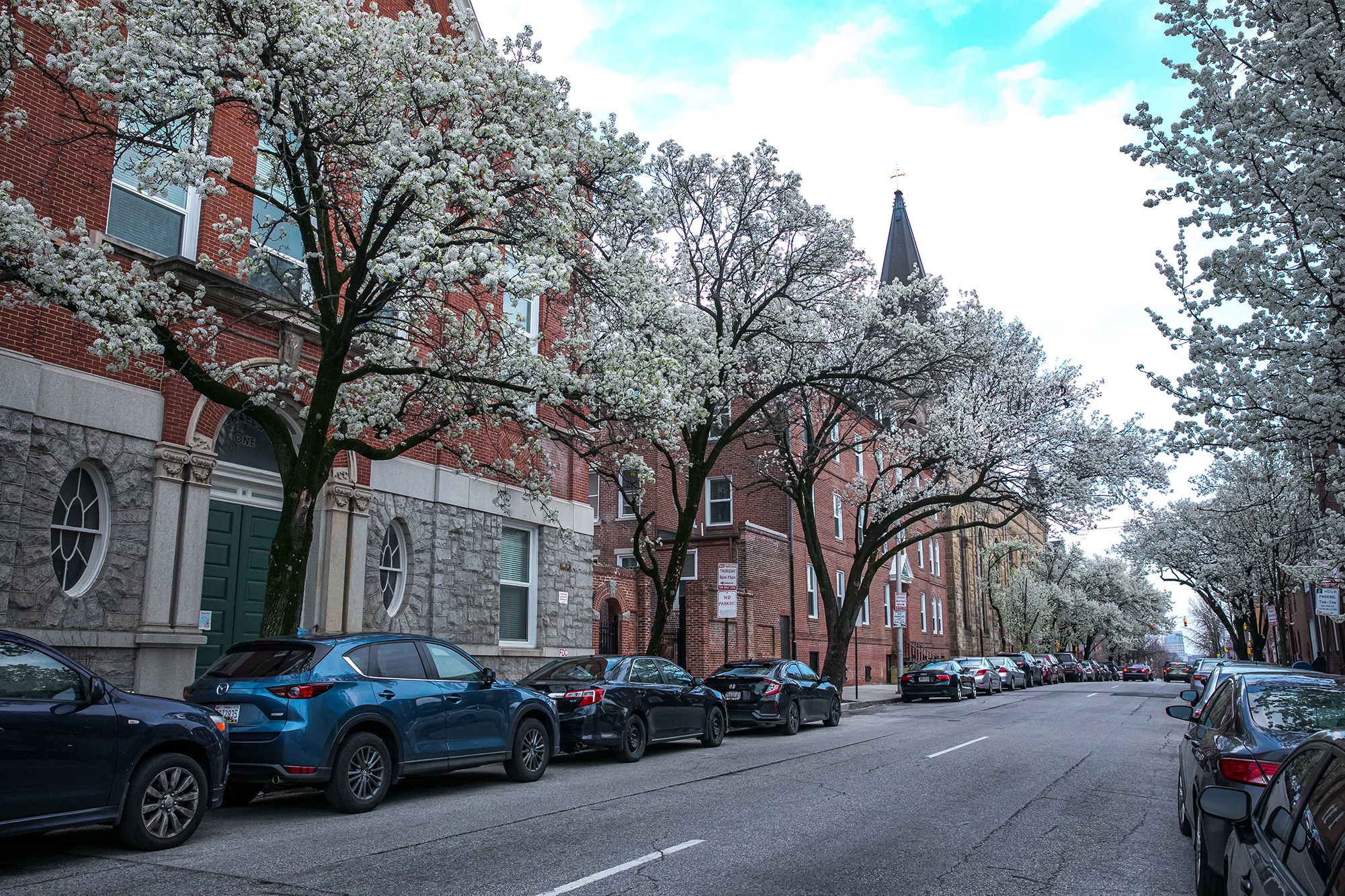 Exterior-Wolfe St