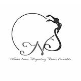 NSRDE logo