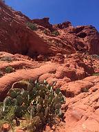 HILV - Hochzeiten in Las Vegas im Red Rock Canyon - Heiraten in Las Vegas
