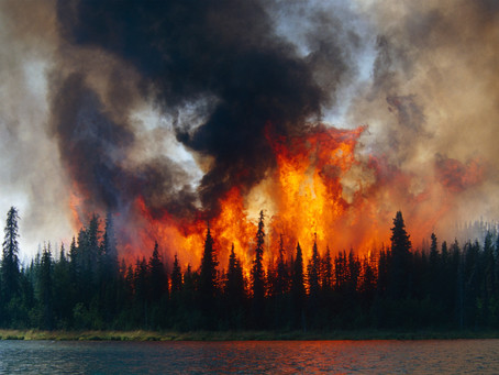 Arctic Wildfires Isn't Just a Cool Band Name