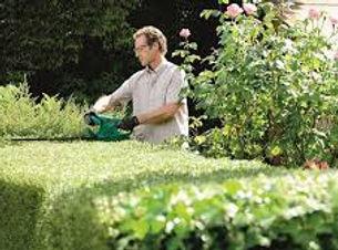 Hedge Cutting.jpg