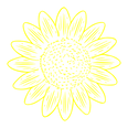 sunflower (3).png