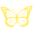 Butterfly on.png