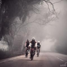 Through the fog.jpg