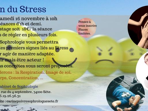 Stage Gestion du Stress
