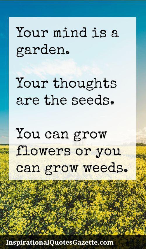 Your Mind is a Garden Meme,
