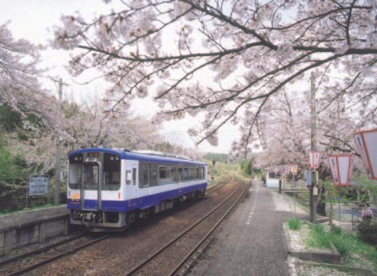 さくら駅.jpg
