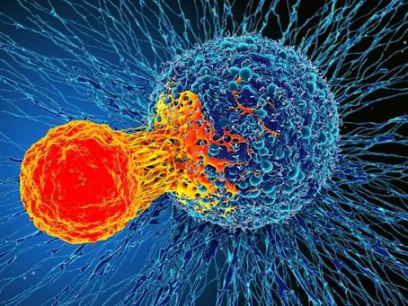 Pinta fuera de la raya para luchar contra el cáncer