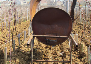 Workshop Wines is born...
