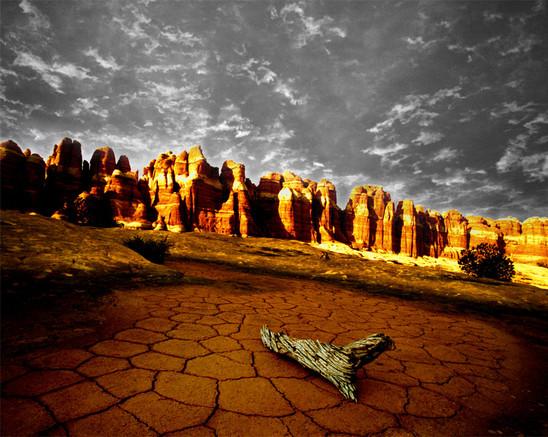 Cracked-earth-sky - Copy.jpg