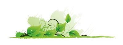 Consumo y Medio Ambiente