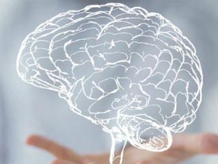 Estudio de Género: Aportes de la Neurociencia