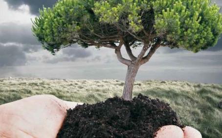 La Tierra es de quien la Conserva