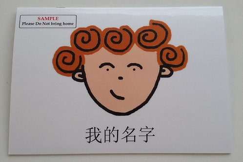 Chinese Standard Edition