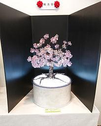 櫻樹.jpg