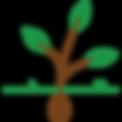 Seed-AgroBead.png