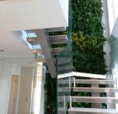 Giardini_verticali_artificiali   (40).pn