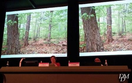 convegno_alberi