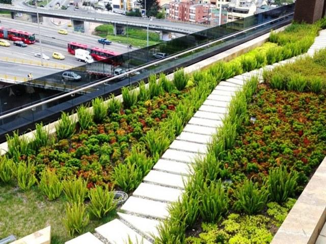 Erba-e-piante-sul-tetto