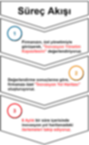 İnnovist süreç (1).png