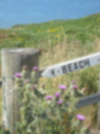 Sign to Gairloch Beach, Ross-Shire | Dog friendly self catering in Wester Ross, Scottish Highlands