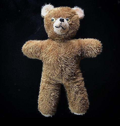 Old Crazy Teddy Bear
