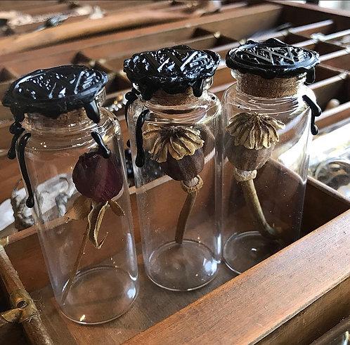 Rose / Poppy In Glass Vial