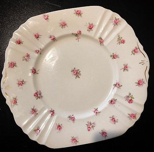 Antique Royal Albert Dinner Plate
