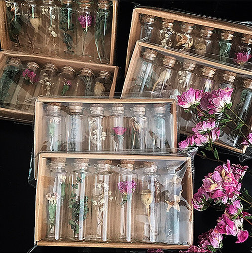 Dried Flowers & Herbs pack of Six