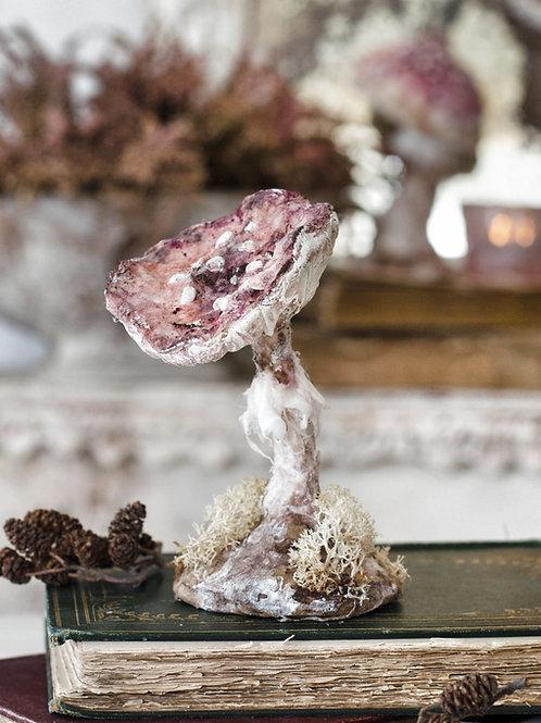 Dusky Pink Mushroom 2