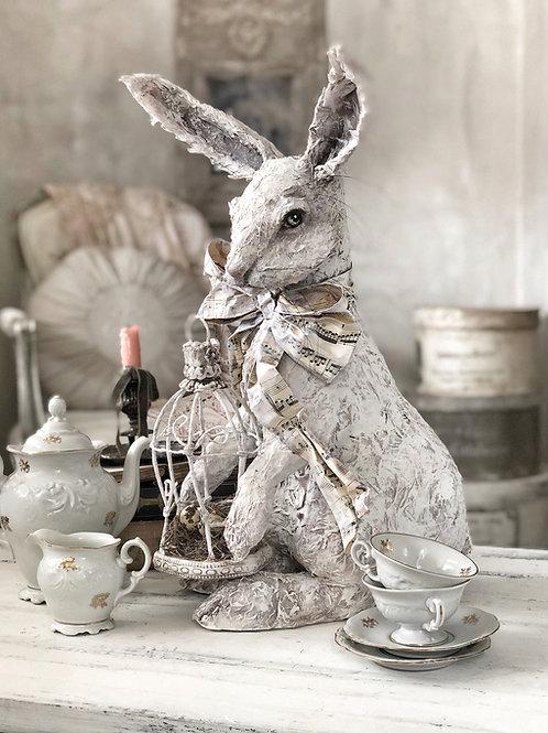 Mr Harvey Hare