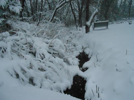 Ruisseau et banc.JPG