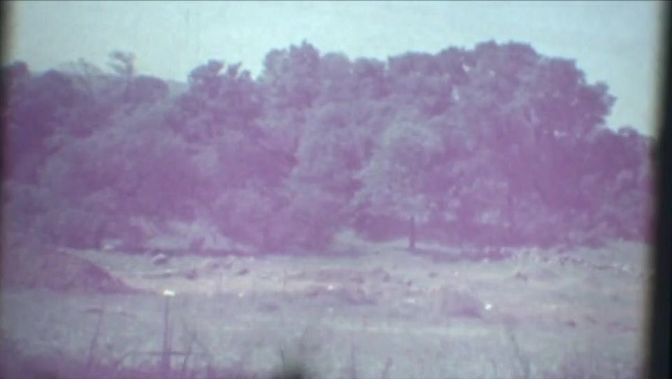 This video taken during the creation of the vineyard shows dynamite being set off in a field.