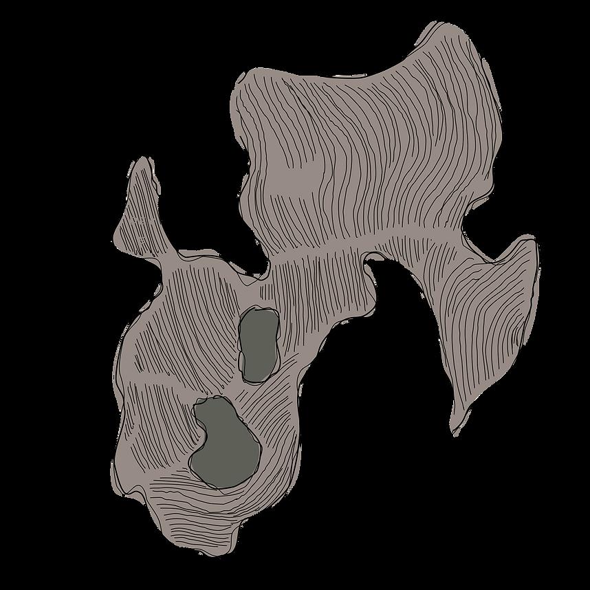 Interactive map of the Hossfeld Vineyards Estate